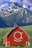 Barn with Wallow Mountains. Oregon