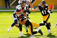 Pittsburgh Steelers 2020-2021