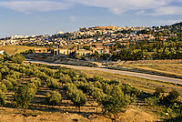 Tunisia, Le Kef.  The citadel above the town dominates the area.  Olive trees in the foreground.