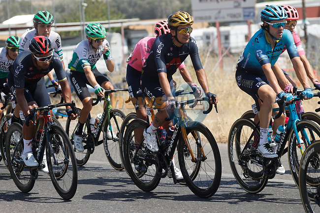 The peloton including Olympic Champion Richard Carapaz (ECU) Ineos Grenadiers during Stage 12 of La Vuelta d'Espana 2021, running 175km from Jaén to Córdoba, Spain. 26th August 2021.     <br /> Picture: Luis Angel Gomez/Photogomezsport | Cyclefile<br /> <br /> All photos usage must carry mandatory copyright credit (© Cyclefile | Luis Angel Gomez/Photogomezsport)