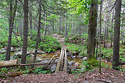 Log bridge at the Notch Brook crossing along the Nancy Pond Trail in the Pemigewasset Wilderness of the New Hampshire White Mountains. Parts of this trail utilizes the railroad bed of the old East Branch & Lincoln Railroad (1893-1948). Update: This log bridge is no longer standing.