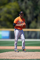 Baltimore Orioles pitcher Willie Rios (73) gets ready to deliver a pitch during a minor league Spring Training game against the Minnesota Twins on March 17, 2017 at the Buck O'Neil Baseball Complex in Sarasota, Florida.  (Mike Janes/Four Seam Images)