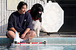 Scott and his dog Sam watch the action at the fourth annual Pooch Plunge at the Carson Aquatic Facility in Carson City, Nev., on Saturday, Sept. 22, 2012. The Parks 4 Paws event helps raise funds for local dog projects..Photo by Cathleen Allison