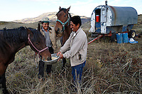 Antonio Basualdo Solorzaho and Modesto Tacza Martinez fed the bronco as they say in Spanish--or mustang.  Modesto then saddled and rode off on the former wild horse to find the sheep.<br /> Peruvian shepherds work at the ranch and live in trailers near the sheep in southern Wyoming.