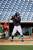 New York Yankees Matt Pita (17) at bat during a Florida Instructional League game against the Philadelphia Phillies on October 12, 2018 at Spectrum Field in Clearwater, Florida.  (Mike Janes/Four Seam Images)