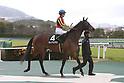 Horse racing : Yukiyanagi Sho 2020