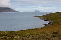 Fjord, Fáskrúðsfjörður, Faskrudsfjördur, im Osten von Island, mit der Felsinsel Skrúður, Skrudur