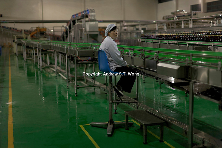 A woman works at a bottling factory of Shikumen Winery in the ancient Fengjing Town of Jinshan District of Shanghai, China on November 7, 2009.