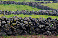 Rock walls near Pukalani Stables<br /> Parker Ranch<br /> South Kohala<br /> Island of Hawaii, Hawaii