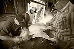 The families work as a team to shave the bristle, remove the organs and offal and eventually hang the carcass for splitting during the annual post-Christmas pig slaughter and processing at the Cuneo Ranch near Clinton, Calif.