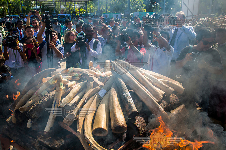 The destruction ceremony of confiscated elephant ivory and wild animal parts organised for the first time by Myanmar's Ministry of Natural Resource and Environment Conservation. In total, 277 pieces of elephant tusk worth of US$1.3 million, 227 pieces of elephant and other wildlife bones, 45 slices of skin, 1544 pieces of horn, 45.5kg of pangolin skin, and 128 other wildlife parts confiscated throughout the years were burned at the ceremony.