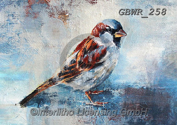 Simon, REALISTIC ANIMALS, REALISTISCHE TIERE, ANIMALES REALISTICOS, innovative, paintings+++++A_ValerieDeRozarieux_Sparrow,GBWR258,#a#, EVERYDAY