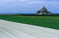 Europe/France/Normandie/Basse-Normandie/50/Manche/Env Saint-Michel-de-Montjoie: Le Mont Saint-Michel et cultures dans les polders