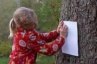 Mädchen, Kinder, Kind machen Abdruck von Rinde, Baumrinde, Baum-Rinde, dazu wird ein Blatt weißes Papier an den Stamm eines Baumes gelegt und mit Wachsmalstiften abgerubbelt. Unterschiedliche Rindentypen ergeben unterschiedliche Abdrücke