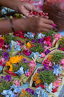 Bali, Indonesia.  Offerings (canang) made by an offerings specialist (tukang banten), to sell to individuals too busy to make their own.  Flower petals and betel are common ingredients.