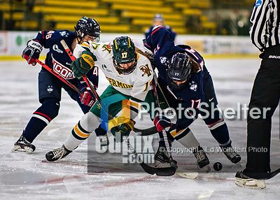 9 February 2020: University of Vermont Catamount Forward Theresa Schafzahl, a Sophomore from Weiz, Austria, faces off against University of Connecticut Huskiy Forward Savannah Bouzide, a Junior from Amherstburg, Ontario, in first period action at Gutterson Fieldhouse in Burlington, Vermont. The Lady Cats defeated the Huskies 6-2 in the second game of their weekend Hockey East series. Mandatory Credit: Ed Wolfstein Photo *** RAW (NEF) Image File Available ***