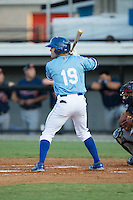Luke Willis (19) of the Burlington Royals at bat against the Danville Braves at Burlington Athletic Park on August 13, 2015 in Burlington, North Carolina.  The Braves defeated the Royals 6-3. (Brian Westerholt/Four Seam Images)