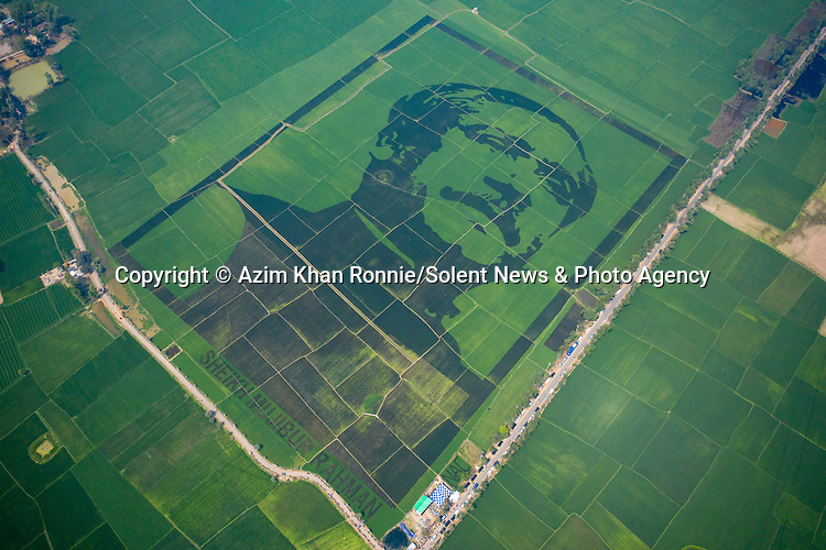 Villagers have created the world's biggest crop mosaic with an extraordinary artwork stretching over almost 120,000 square metres of rice paddy fields.  The huge mosaic was made in the village of Balenda, Bangladesh, and depicts Sheikh Mujibur Rahman.<br /> <br /> Known as 'Father of the Nation', he was the first President of Bangladesh and also later served as Prime Minister until he was assassinated in 1975.  SEE OUR COPY FOR DETAILS.<br /> <br /> Please byline: Azim Khan Ronnie/Solent News<br /> <br /> © Azim Khan Ronnie/Solent News & Photo Agency<br /> UK +44 (0) 2380 458800