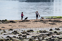 WEATHER PICTURE WALES<br /> Pictured: Dog walkers down the seafront in Mumbles, near Swansea, Wales, UK. Thursday 22 July 2021<br /> Re: High temperatures and sunshine has been forecast for most of the UK.