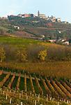 Italien, Piemont, Langhe, bei Alba: Blick auf Weinort Diano d'Alba | Italy, Piedmont, Langhe, near Alba, view at village Diano d'Alba