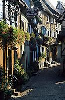 Europe/France/Alsace/68/Haut-Rhin/Eguisheim : Ruelle