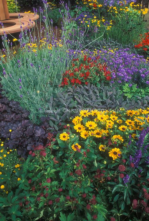 Colorful garden with Rudbeckia black eyed Susan daisies, sage, astrantia, flowering tobacco Nicotiana, bachelor buttons Centaurea cyanus, Heuchera, Coreopsis