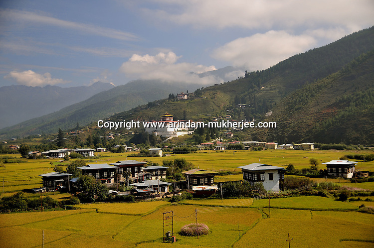 A view of Paro city. Arindam Mukherjee..