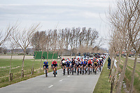 The riders of the 2nd bunch fighting against the wind in the infamous De Moeren.<br /> Relatively early in the race, the peloton split in 2 (with 180 km (!) to go... ) and never regrouped after that; this is the 2nd group that never caught on again and kept chasing until the finish.<br /> The strong western wind played a major role in this scenario<br /> <br /> 83rd Gent-Wevelgem - in Flanders Fields (ME - 1.UWT)<br /> 1 day race from Ieper to Wevelgem (BEL): 254km<br /> <br /> ©kramon