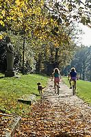 Europe/France/Limousin/87/Haute Vienne: Vélo Tout Terrain à l'Ile de Vassivière,  le Parc Naturel Régional de Millevaches en Limousin