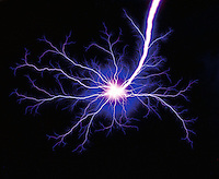 Graphic image - Electric blue plasma tendrils on a black background..