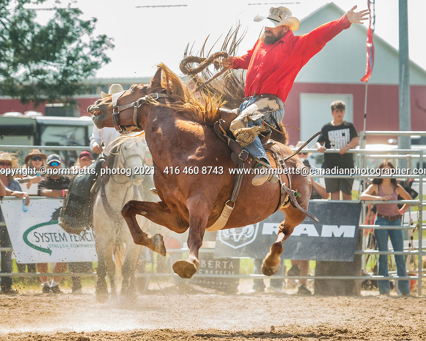 The first Ontario RAM rodeo August 27 & 28, 2021 was at the Orangeville Fair Grounds,