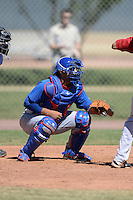 Chicago Cubs catcher Mark Malave (29) during an Instructional League game against the Arizona Diamondbacks on October 5, 2013 at Salt River Fields at Talking Stick in Scottsdale, Arizona.  (Mike Janes/Four Seam Images)