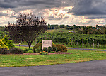 A dramatic late afternoon sky makes for a dramatic view from the front porch at Swedenburg Estate Vineyard.  (HDR image)