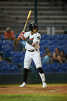 Great Falls Voyagers Lency Delgado (12) at bat during a Pioneer League game against the Missoula Osprey at Centene Stadium at Legion Park on August 19, 2019 in Great Falls, Montana. Missoula defeated Great Falls 1-0 in the second game of a doubleheader. (Zachary Lucy/Four Seam Images)