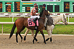 January 16, 2016: Prayed For with Leandro R. Goncalves up in the Marie G. Krantz Memorial Stakes race at the Fairground race course in New Orleans Louisiana. Steve Dalmado/ESW/CSM