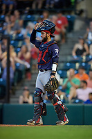 Binghamton Rumble Ponies catcher Ali Sanchez (20) during an Eastern League game against the Richmond Flying Squirrels on May 29, 2019 at The Diamond in Richmond, Virginia.  Binghamton defeated Richmond 9-5 in ten innings.  (Mike Janes/Four Seam Images)