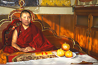 Ling Rinpoche, young reincarnate Lama.