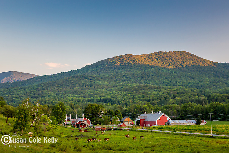Last light on a dairy farm in Rupert, Vermont, USA