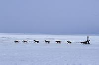 Harmony Kanavle on Ice Near Koyuk