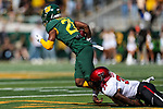 Baylor Bears wide receiver Josh Fleeks (21) in action during the game between the Texas Tech Red Raiders and the Baylor Bears at the McLane Stadium in Waco, Texas.