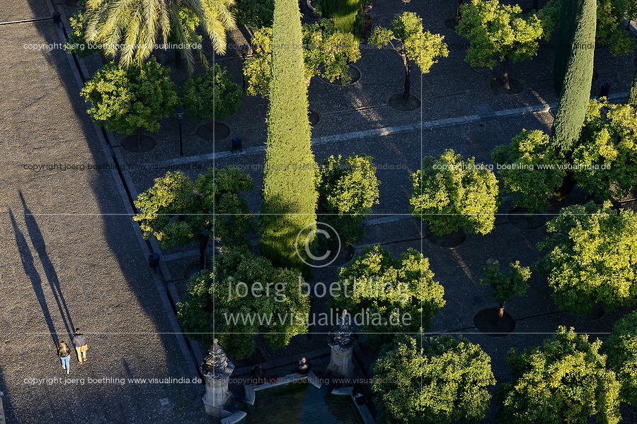 SPAIN, Cordoba, Mezquita, mosque and cathedral, court garden with orange trees
