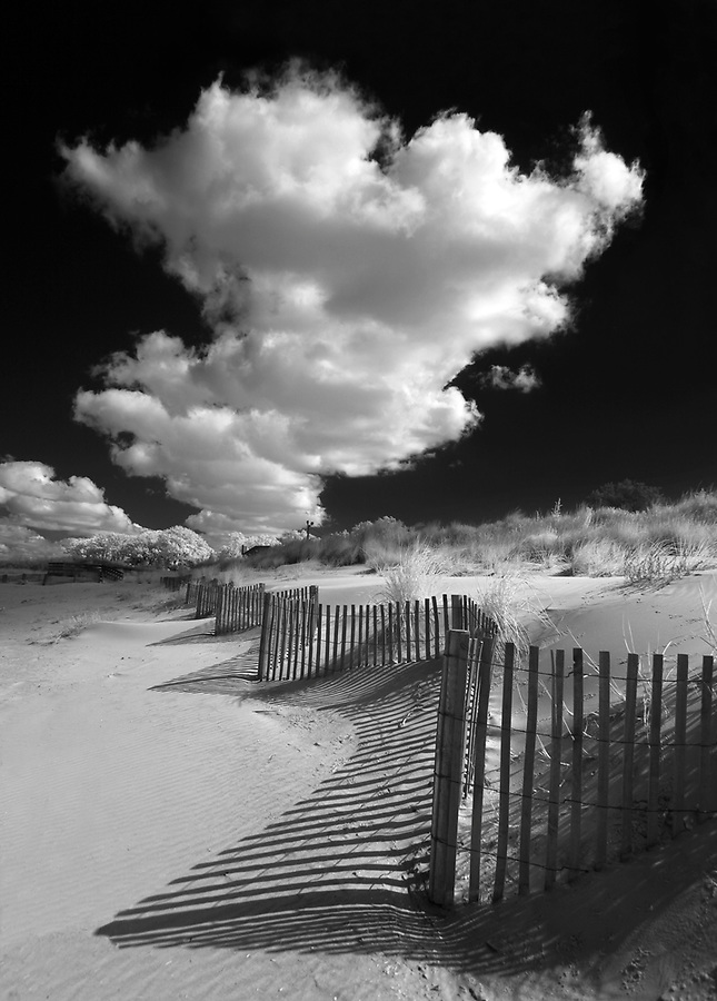 Infrared landscape-Cape Charles, Virginia. Photo/Andrew Shurtleff Photography, LLC