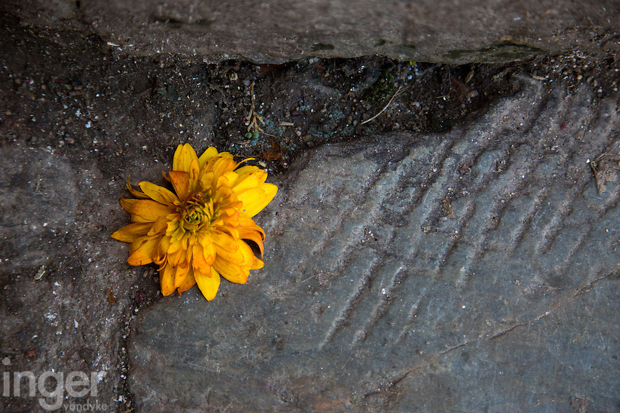 Marigold on the steps of Machhendranath Temple in Bungamati