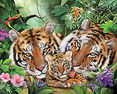 Interlitho,Simonetta, REALISTIC ANIMALS, paintings+++++,tigercouple,cub,jungle,KL4451,#a# ,puzzles
