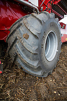 Large low ground pressure tyre on a Grimme Varitron 270 self propelled potato harvester