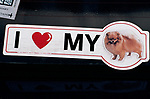 CAR STICKER  Crufts Dog Show, National Exhibition Centre Birmingham Uk 1991