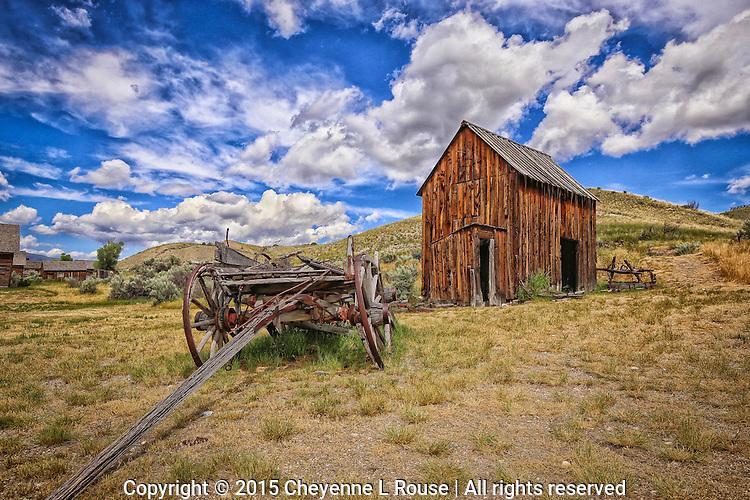 Bannack Goodness - Montana