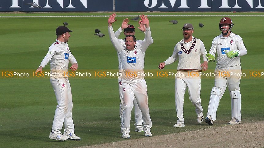Somerset bowler, Roelof Van Der Merwe celebrates taking the wicket of Surrey batsman, Jordan Clark during Surrey CCC vs Somerset CCC, LV Insurance County Championship Group 2 Cricket at the Kia Oval on 13th July 2021