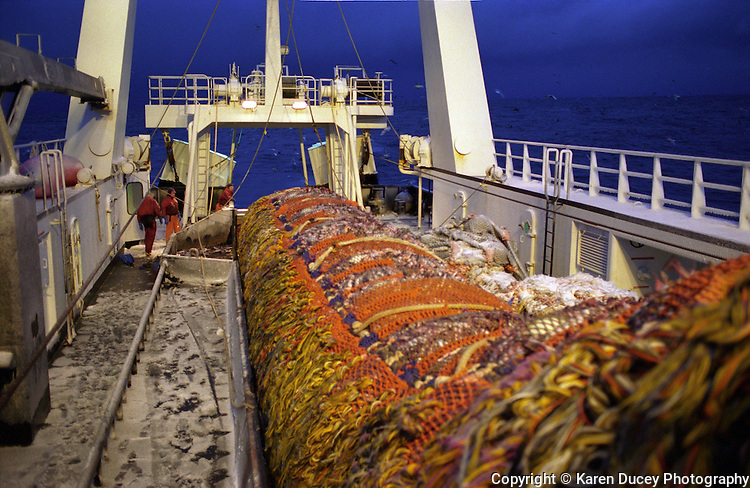 The M/V Auriga fishes for pollock in the Bering Sea