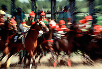Thoroughbred horses break from the starting gate